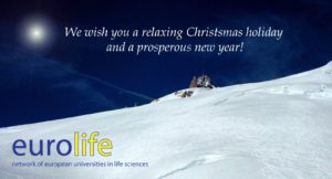 Eurolife wishes you a relaxing Christmas holiday and a prosperous new year!
